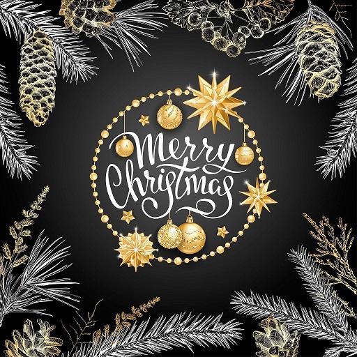 Merry Christmas WebMatics Family